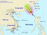 Bão số 8 sẽ đi vào đất liền tỉnh Quảng Đông và suy yếu dần