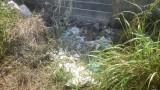 Nạn nhân chết cháy trong khuôn viên khu công nghiệp là công nhân công ty dây cáp điện