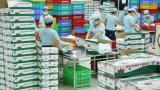 Lô thanh long đầu tiên Việt Nam xuất khẩu sang Úc