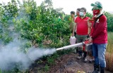 Máy phun thuốc dạng khói giảm 90% thời gian phun