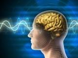 Những thói quen có thể làm tổn thương trí não của bạn