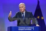 Đại diện EU thừa nhận chưa có đột phá lớn trong đàm phán Brexit