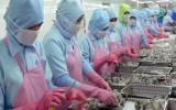 Xuất khẩu vào thị trường Hàn Quốc: Cửa mở nhưng vẫn khó khăn