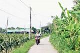 Châu Thành đang tiến rất gần đến huyện nông thôn mới!