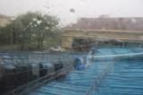 Bão số 12 đã đổ bộ vào Khánh Hòa, tâm bão mạnh cấp 12