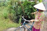 Doanh nghiệp gây ô nhiễm môi trường - Dân kêu cứu