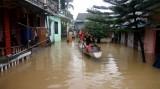 Cơn bão số 12 đã làm ít nhất 44 người chết và 19 người mất tích