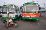 Khai trương tuyến xe buýt chất lượng cao Tân An-Chợ Lớn