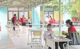 """Trường THPT Đức Hòa: Tươi, mát """"Hành lang xanh"""""""