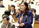 """Đại biểu Quốc hội: Cần làm rõ """"bí mật nhà nước"""" để không bị lạm dụng"""
