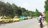 Quy hoạch mạng lưới xe taxi: Cần đón đầu nhu cầu phát triển