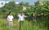 HĐND tỉnh Long An tiếp tục đổi mới, nâng cao hiệu quả hoạt động