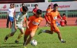 Khai mạc Giải Bóng đá học sinh THPT tỉnh Long An 2017
