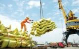 WB: Kinh tế Việt Nam có thêm một năm khởi sắc với tăng trưởng cao