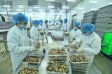 Xuất khẩu của Việt Nam khả năng vượt 212 tỷ USD trong năm 2017