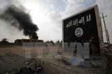 Tổ chức Nhà nước Hồi giáo vẫn là mối đe dọa toàn cầu