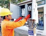 Công ty Điện lực Long An đóng góp tích cực trong xây dựng nông thôn mới