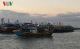 Các địa phương ven biển Bà Rịa-Vũng Tàu chủ động đối phó bão số 16