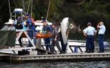 Máy bay rơi ở Australia, toàn bộ phi hành đoàn thiệt mạng