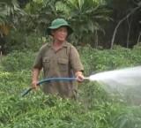 Hội Cựu chiến binh huyện Cần Giuộc: Đoàn kết giúp nhau phát triển kinh tế gia đình