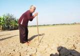 Vụ 5ha đất lúa màu mỡ bị bỏ hoang: 9 hộ dân nộp đơn khởi kiện UBND huyện Tân Trụ