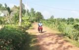 Hội Nông dân Thái Bình Trung chung tay tạo cảnh quan môi trường xanh, sạch, đẹp