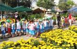Chợ hoa Xuân TP.Tân An: Hơn 400 lô được bố trí