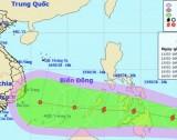 Chuẩn bị ứng phó với bão Sanba vào đúng dịp Tết nguyên đán