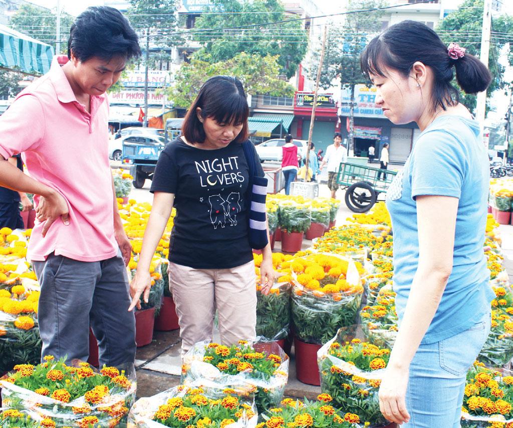 """Những ngày tết, mai vàng, hoa đào, cúc, vạn thọ,... khoe sắc, tràn ngập phố phường. Người đi chợ hoa thả mình vào những sắc màu tươi thắm, rước """"nàng xuân"""" về nhà với ước mong một năm mới sung túc, may mắn"""