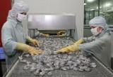 Đề nghị Mỹ xem xét lại kết quả tính thuế chống phá giá cho tôm Việt