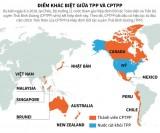 [Infographics] Những điểm khác biệt giữa TPP và CPTPP