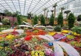 Chiêm ngưỡng bồn hoa rực rỡ lớn nhất thế giới tại Singapore