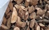 Cây rừng ngâm rượu nghi có chất cực độc khiến 3 người chết