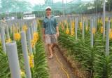 Tấm lòng nguyên Thủ tướng Phan Văn Khải với nông dân