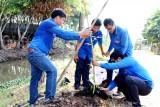 Đoàn viên, thanh niên trồng cây xanh bảo vệ môi trường