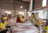 Long An: Chỉ số phát triển công nghiệp ước tăng 16,22%