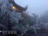 Sa Pa nhiệt độ xuống thấp, băng giá bất ngờ phủ trắng đỉnh Fansipan