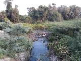 Tình trạng ô nhiễm môi trường tại xã Tuyên Bình được khắc phục bước đầu