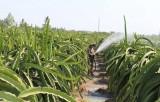 Châu Thành - Bước đột phá trong phát triển nông nghiệp theo hướng chất lượng