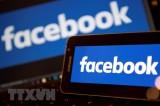 Indonesia yêu cầu Facebook bàn giao kết quả kiểm soát rò rỉ dữ liệu