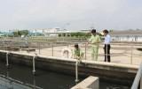 Bảo đảm an toàn môi trường tại khu, cụm công nghiệp