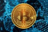 Bitcoin Việt Nam bị xử phạt, tịch thu tên miền mạng xã hội