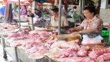 Giá heo hơi tăng nhưng người nuôi chưa mạnh dạn tăng đàn
