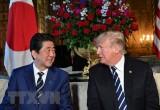Tổng thống Mỹ có thể thăm Nhật ngay sau thượng đỉnh Mỹ-Triều