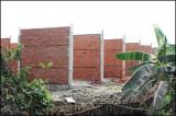 Cần Giuộc phát hiện 299 trường hợp vi phạm về đất đai và xây dựng
