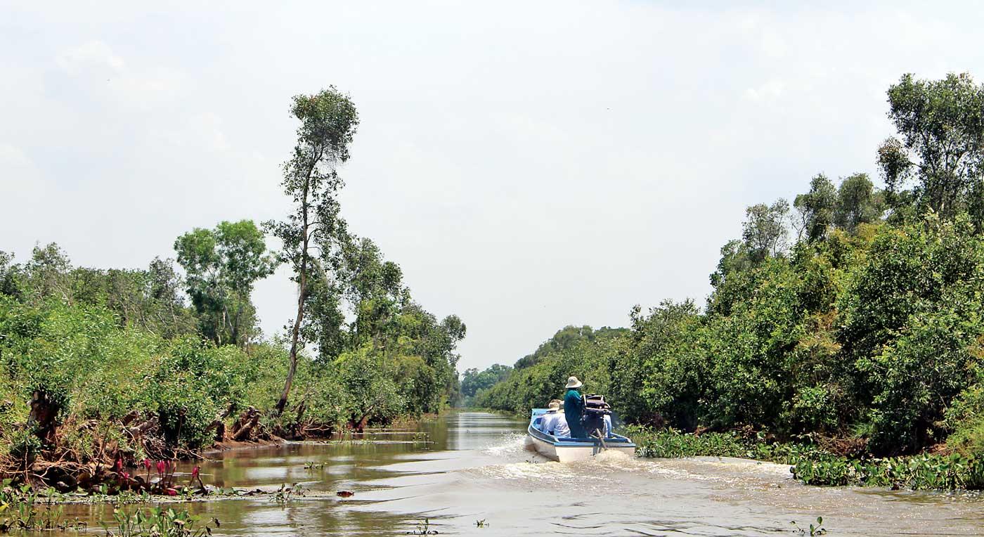Du khách đi thuyền xuyên rừng
