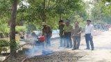 Tăng cường quản lý, bảo vệ tài nguyên rừng