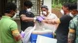 Ấn Độ: 10 người tử vong do virus hiếm gặp
