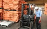 Kiểm tra công tác bảo đảm an toàn, vệ sinh lao động tại huyện Cần Đước