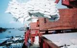 Xuất khẩu tăng 40%, tín hiệu vui của ngành lúa gạo